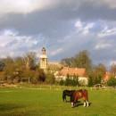 Die Tramper Kirche, gesehen von der Pferdeweide