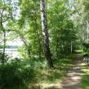 Der Spazierweg um den Brüssower See 1